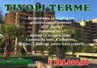 Appartamento in vendita a  TIVOLI TERME su  foto 1 di 5